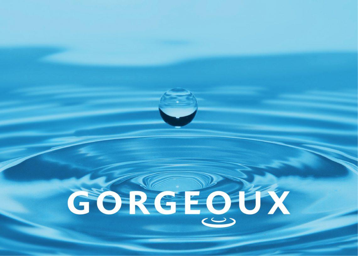 Gorgeoux - Remake Behance header-03